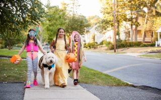 Trick or Treating Alternatives That Are Still Fun