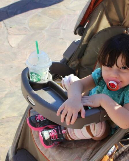 Disneyland new stroller rules