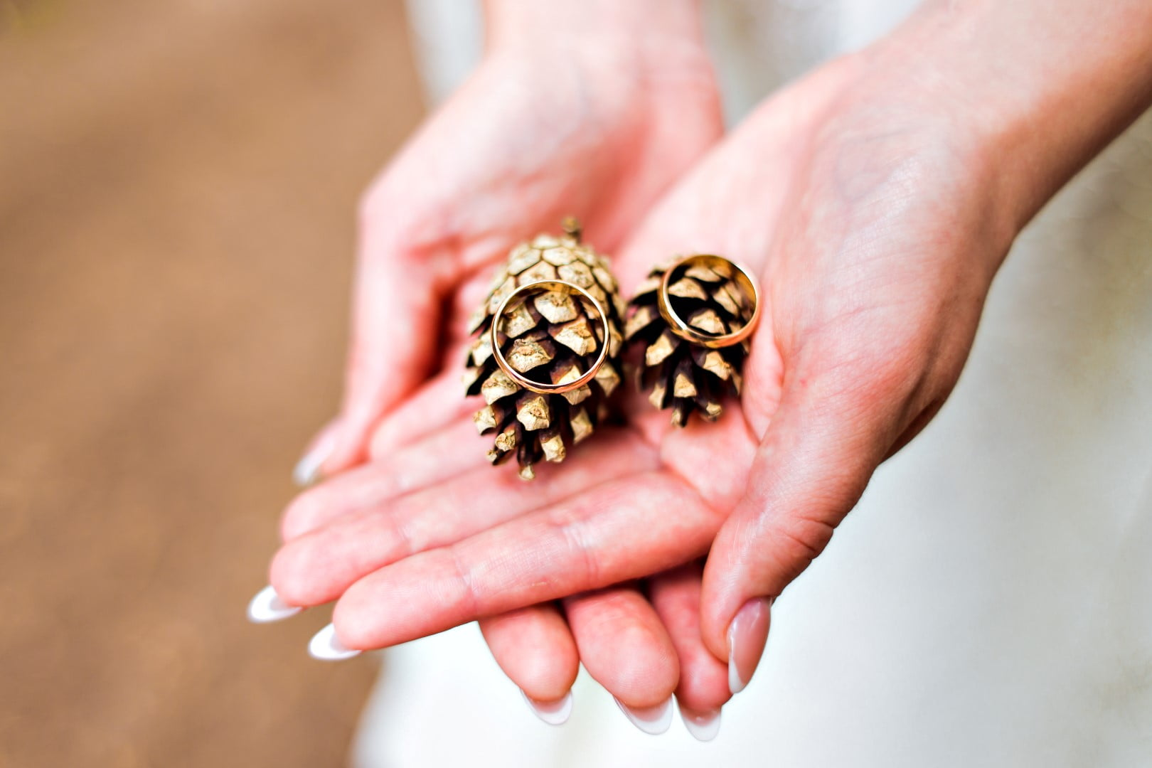 Take a picture of your wedding rings on pinecones